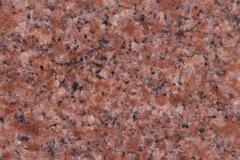 north american pink